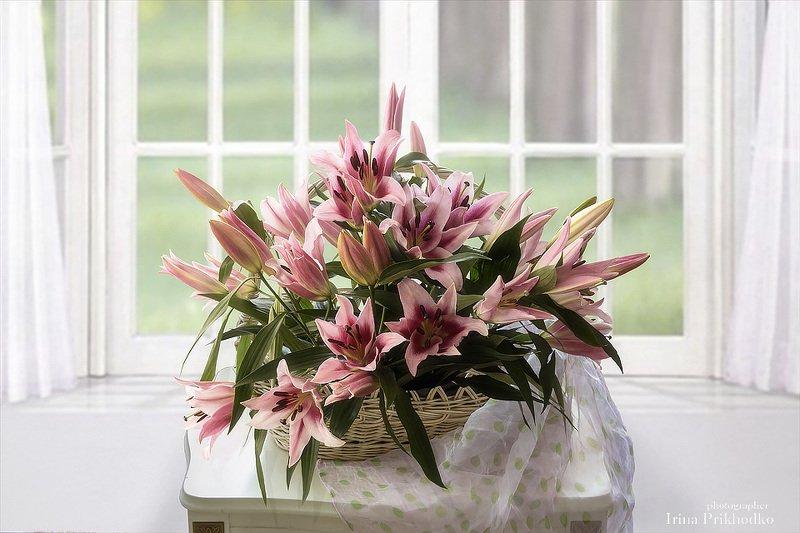 натюрморт, букет, цветы, лилии, интерьер Натюрморт с розовыми лилиямиphoto preview