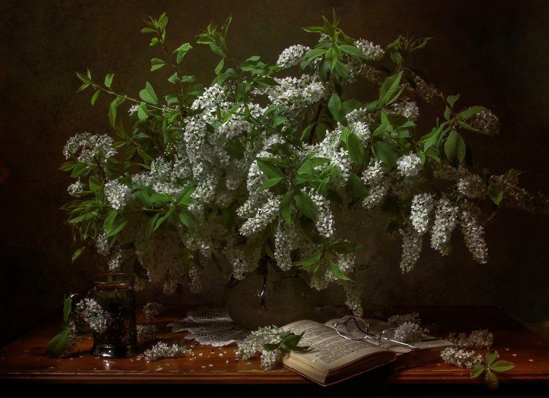 натюрморт, черемуха Дурманящий запах весны.....photo preview