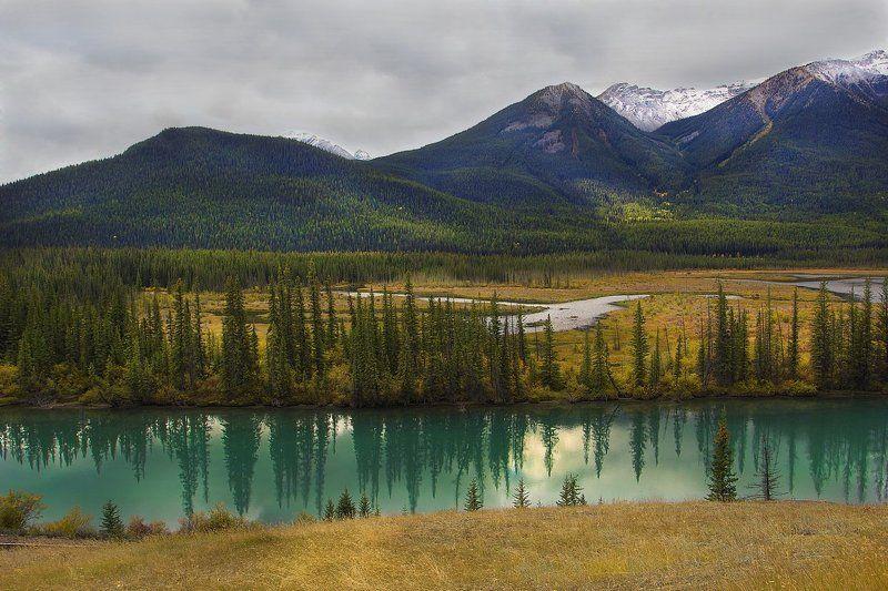 канада, скалистые горы, река, елки, ели, банф Параллельный мирphoto preview