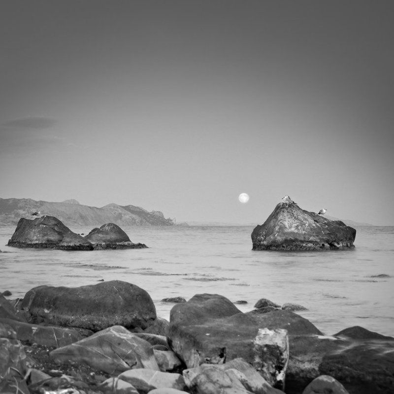 в ожидании Большой Луны ...photo preview