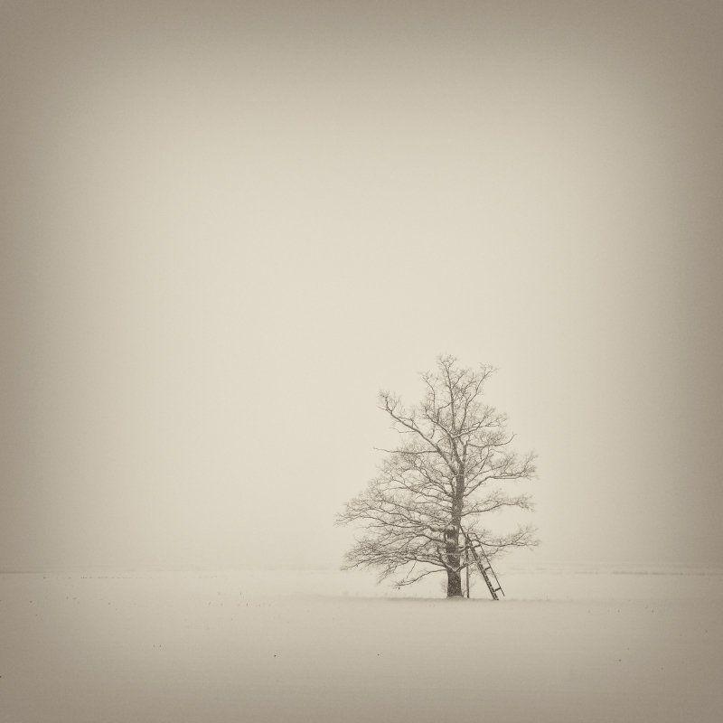 Про одиночествоphoto preview