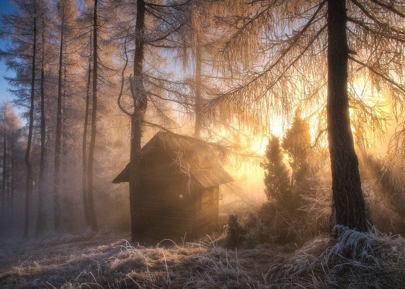 landscape,poland,home,sunrise,autumn,winter,light,fog,forest,architecture,nature magic homephoto preview