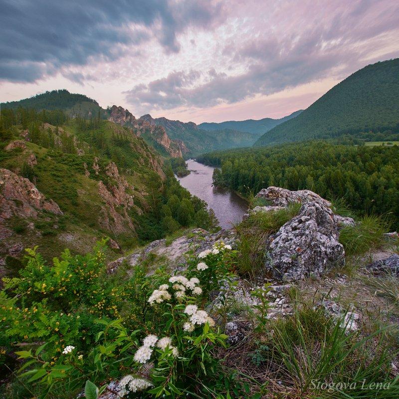 хакасия Цветы, горы, рекаphoto preview