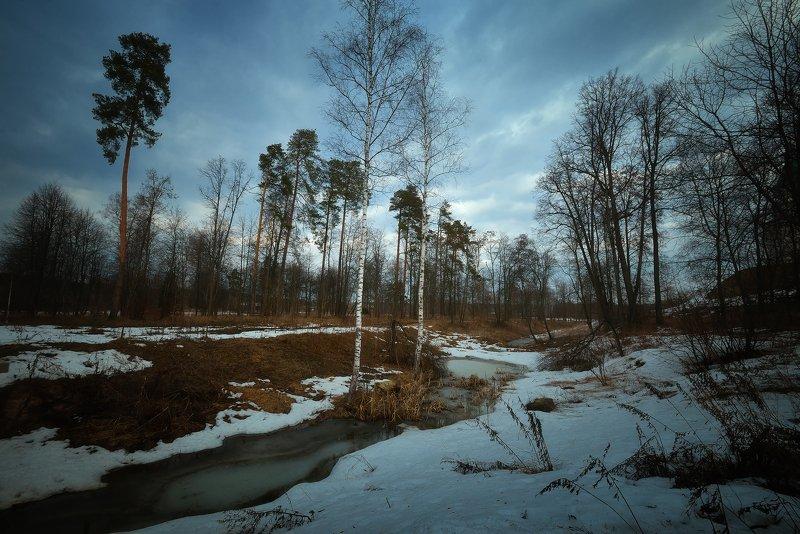 лес, природа, пейзаж, весна, река, вода, ручей, подмосковье Весеннее безвременье...photo preview