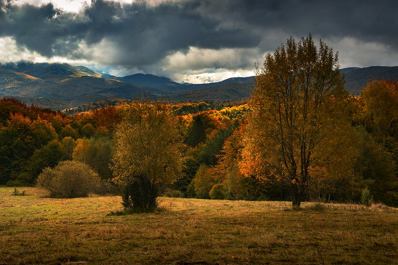 #mountains #landscape #autumn Autumn in the Bieszczady Mountainsphoto preview
