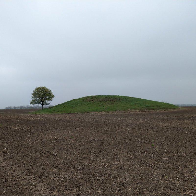 курган,дерево,пейзаж,минимализм,весна,поле,земля ***photo preview