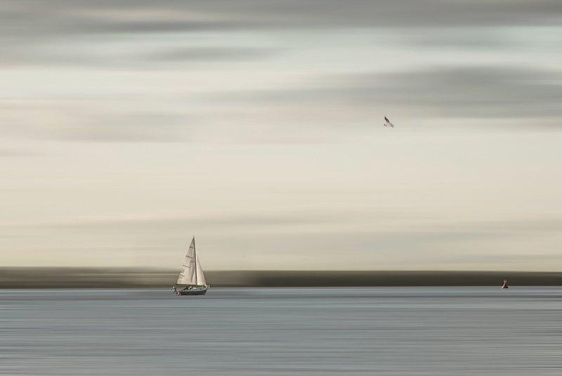 Прогулки на яхтеphoto preview