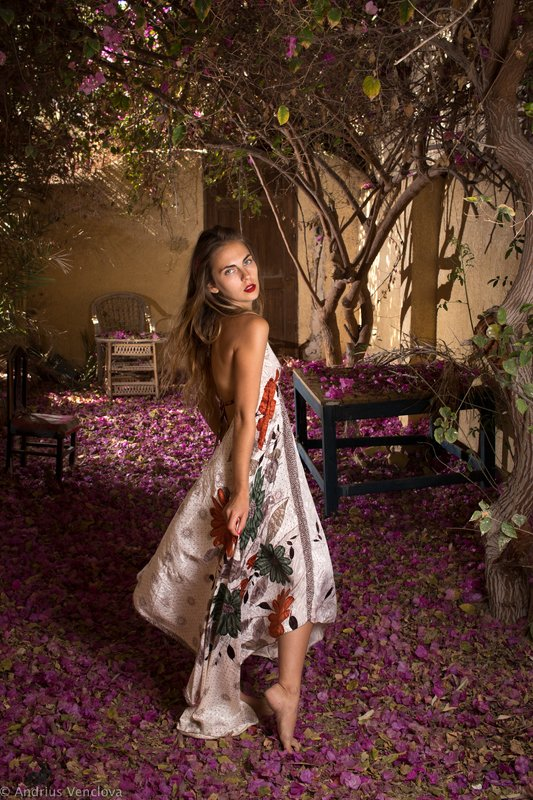 Portrait in the yard covered with Bougainvillea petalsphoto preview