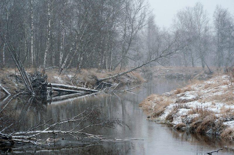 времена года, лесная река, мещёра, рязанская область Про бег времён на берегу Мещёрской реки ...photo preview