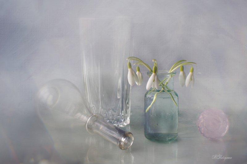 подснежники,цветы,весна,стекло, Вестники весныphoto preview