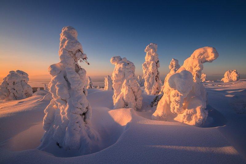 север, кольский, заполярье, кандалакша,гора волостная Февральские снежники.photo preview