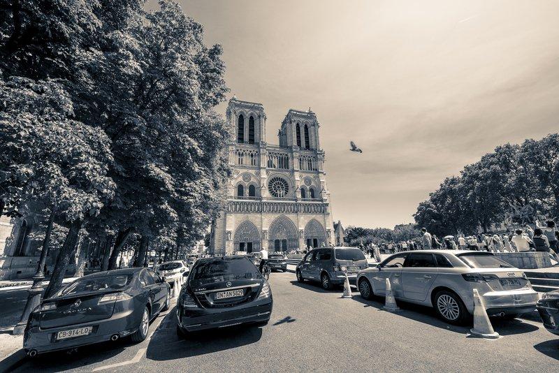 париж, notredame, cобор парижской богоматери, пожар, prayfornotredame, Notre Dame (RIP) монохромphoto preview