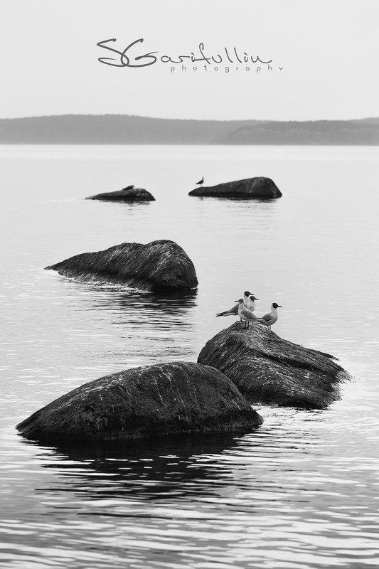 Верх-Исетский пруд, Екатеринбург, чб Каменная дорожкаphoto preview