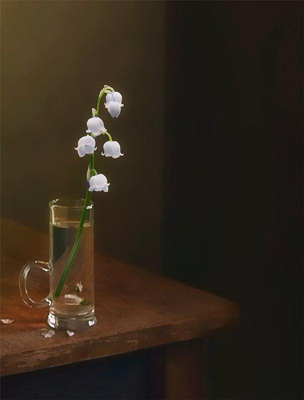 still life, натюрморт,    винтаж,    цветы, ландыши , свет, тень, минимализм натюрморт с ландышемphoto preview