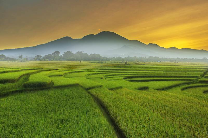 #landscape #nature #bengkulu #asia #indonesia beauty landscape with mountain range in morning color before sunlight momentphoto preview