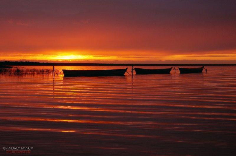 пейзаж, природа, Плещеево озеро, Переславль-Залесский, закат Плещеево озероphoto preview