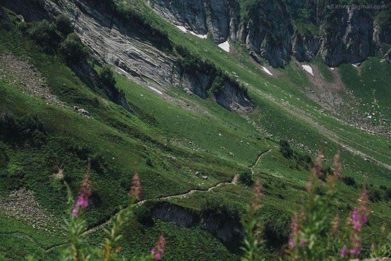 Тропа в горахphoto preview