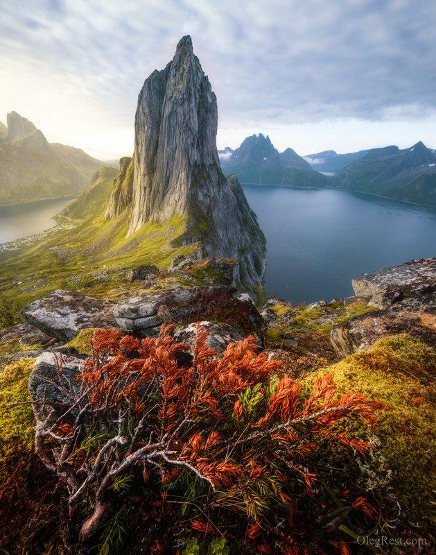 норвегия горы сегла рассвет segla Segla mountain фото превью