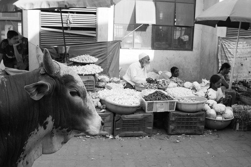 индия, жанр, стрит, india, street, genre, travel, estet mf, saratov, саратов, гоа, goa, indian market Indian marketphoto preview