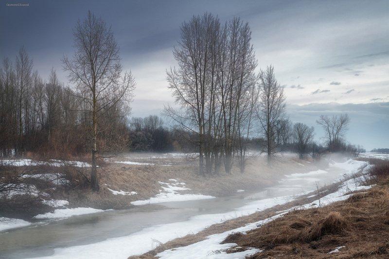 весна, поле, снег, озеро, лес, тополь, туман, испарение Дыхание весныphoto preview