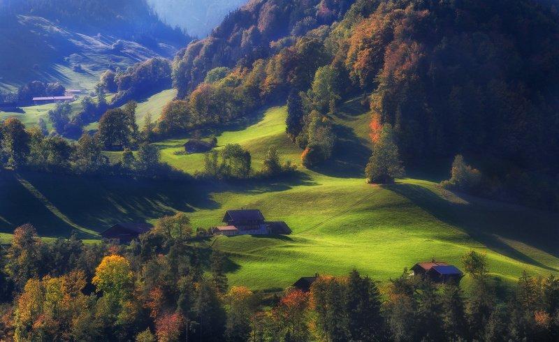 швейцария, альпы, горы На бархатных холмахphoto preview