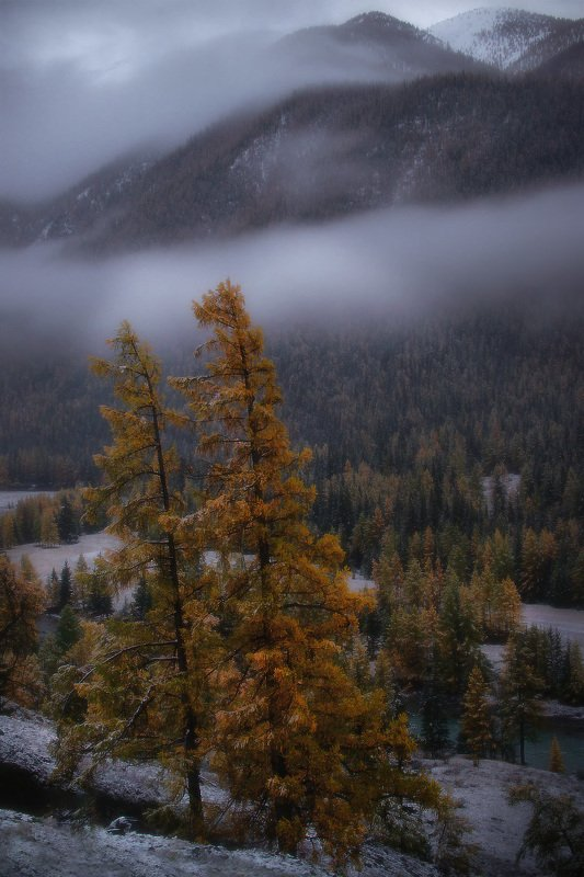 алтай, горы Алтайской осенью фото превью