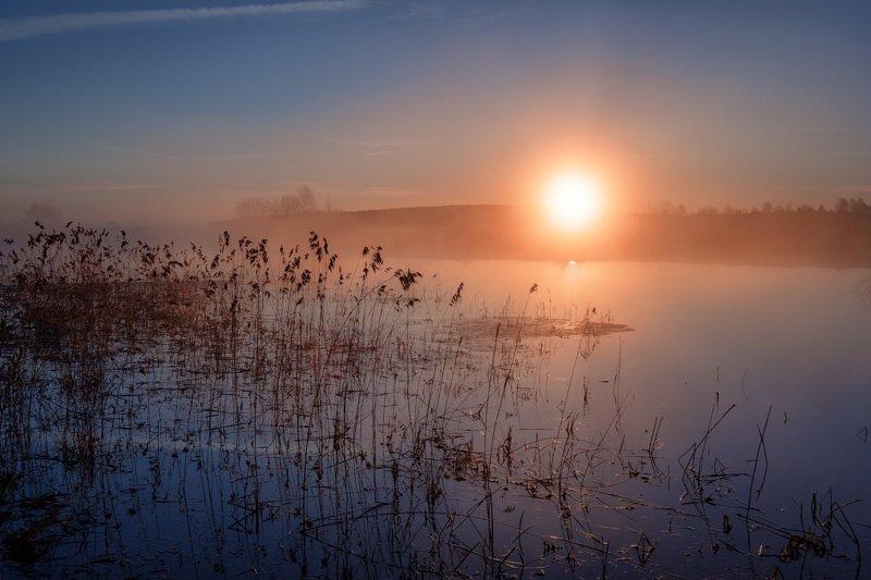 волга, соболево, пейзаж, рассвет, пруд, покой, солнце, туман, вода, отражения Весенний рассветный покойphoto preview