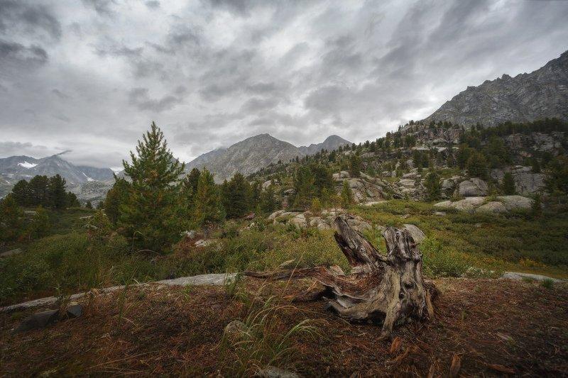 горы, облака, природа, алтай, рассвет, река, путешествие, россия, озеро По дороге к озеру Дарашкольphoto preview