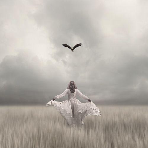 teach me how to fly