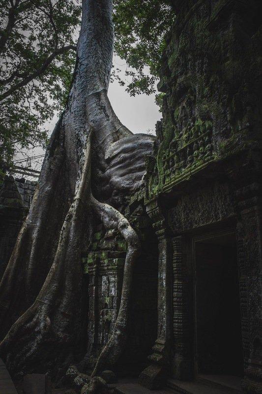 Камбоджаphoto preview