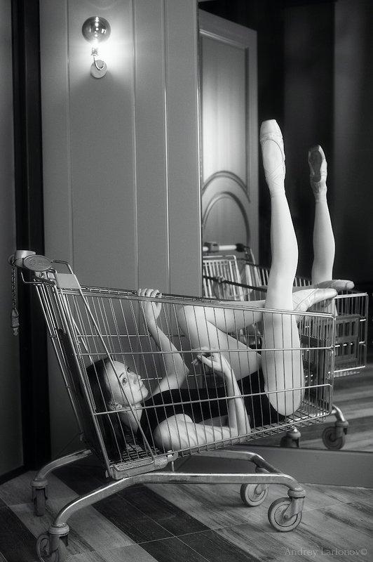 балет, балерина, девушка, зеркало, андрейларионов ***photo preview