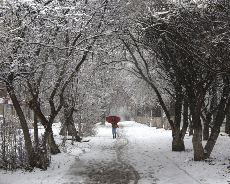 Апрельский снегопадphoto preview