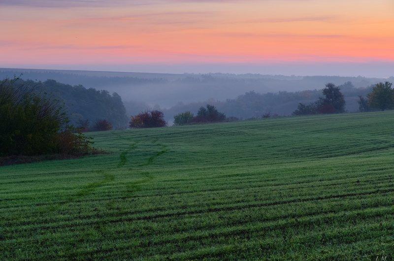 пейзаж, утро, рассвет, поля, туман, холмы, ферма, morning, fog, misty, fields, green, landscape, nature, hills, sunrise, foggy, old farm, countryside пробежаться по росе ...photo preview