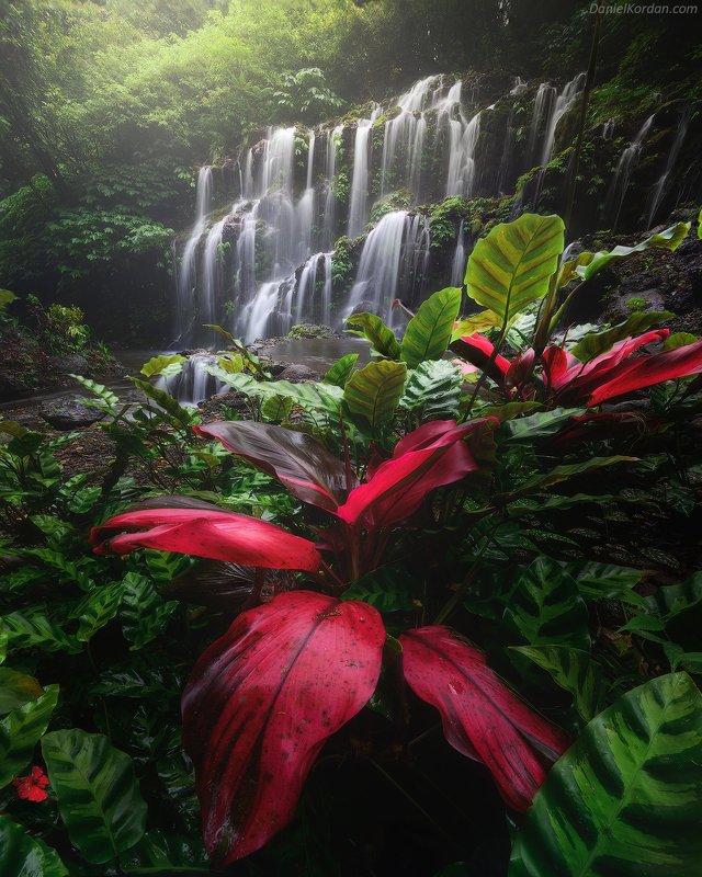 Индонезия Балиphoto preview