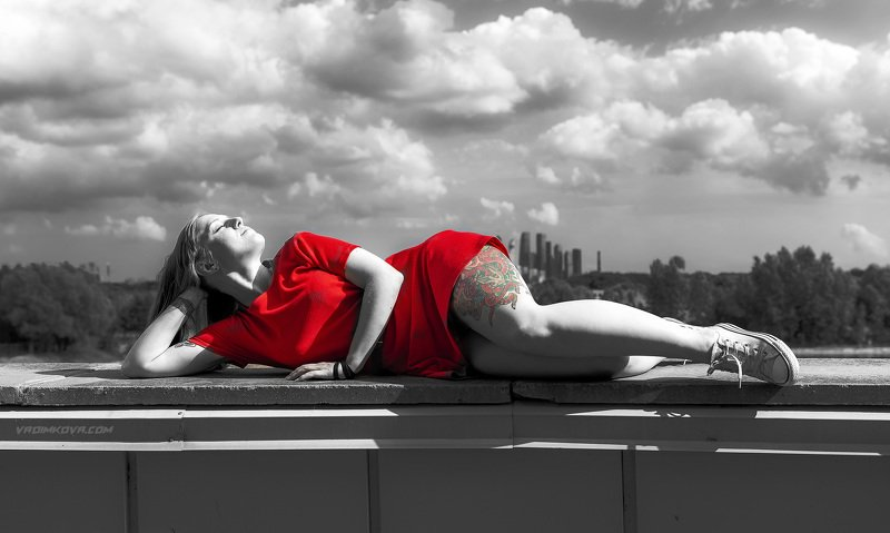 Красный осьминогphoto preview