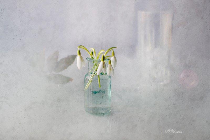 подснежники,стекло,ваза,цветы,вера павлухина, Подснежникphoto preview