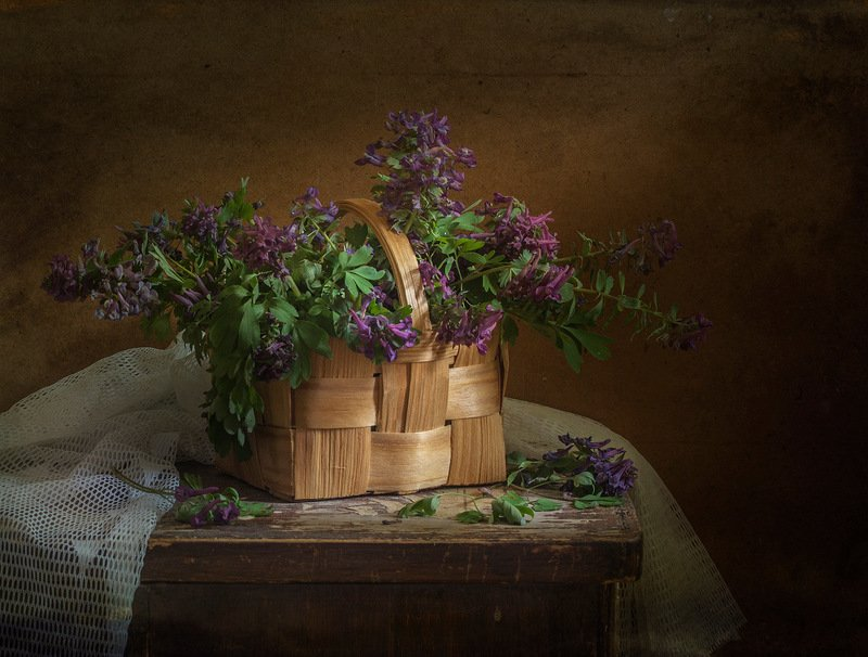 натюрморт,хохлатки,весенние цветы Хохлаткиphoto preview