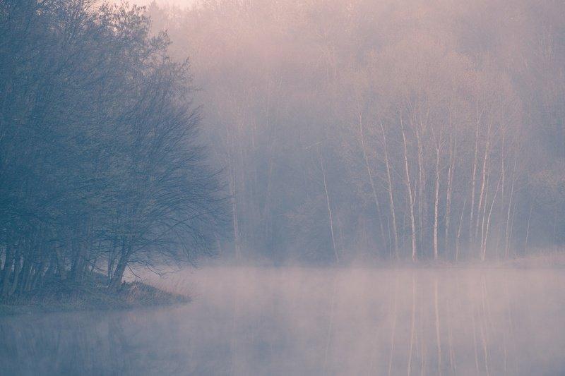 Природа просыпаетсяphoto preview