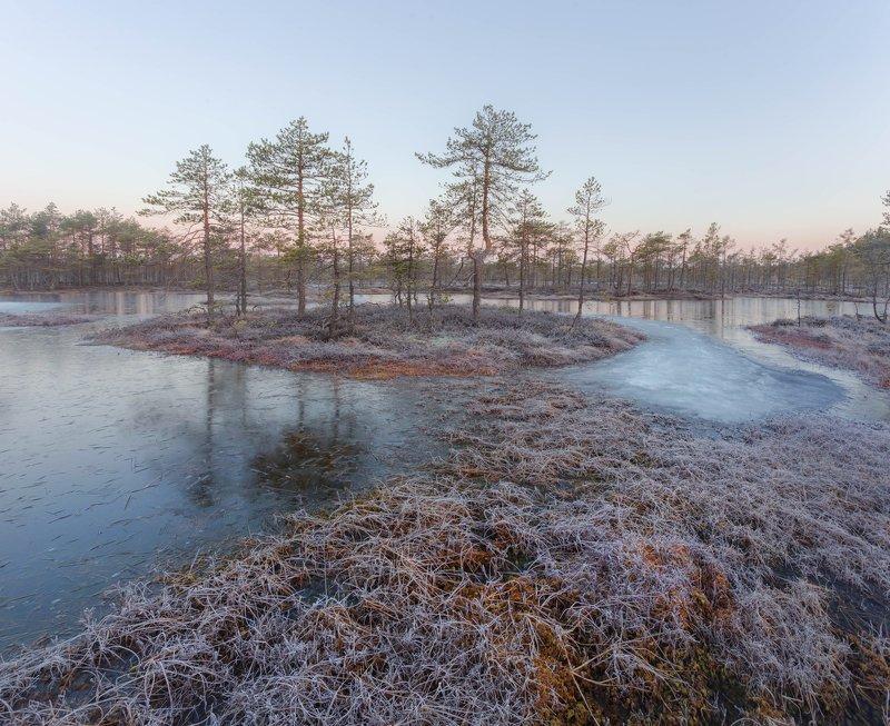 болото, кайф, рассвет ,север ,солнце, свет, остров, лед За пару минут до восходаphoto preview