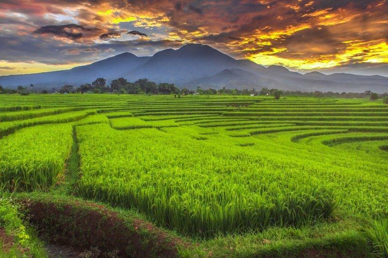 beauty panorama landscape with amazing sunrisephoto preview
