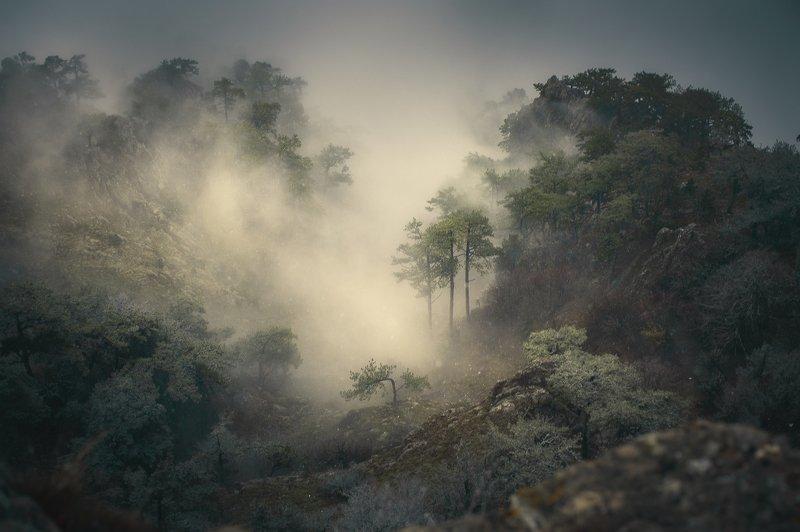 горы, туман над облакамиphoto preview