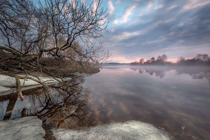дубна, река, апрель, дерево, весна, вода, рассвет, небо, отражения, туман, пейзаж, лед, утро Весенняя водаphoto preview