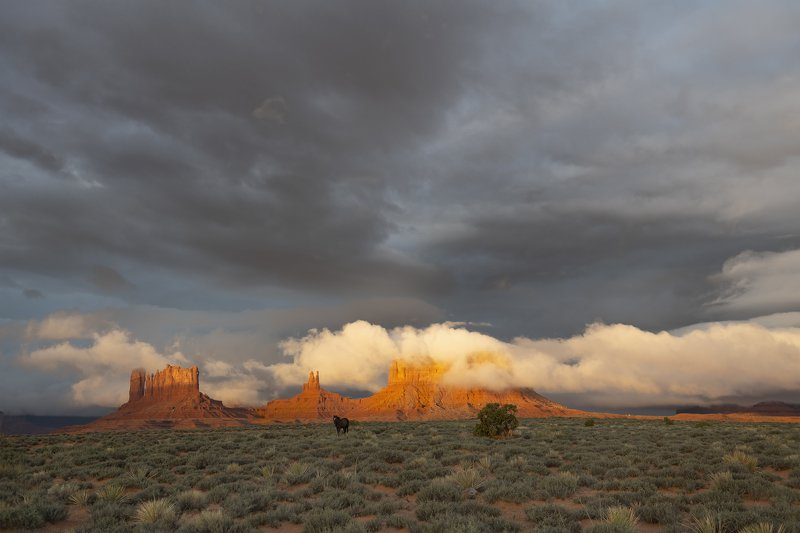 valley of fire, monument valley Somewhere in Americaphoto preview