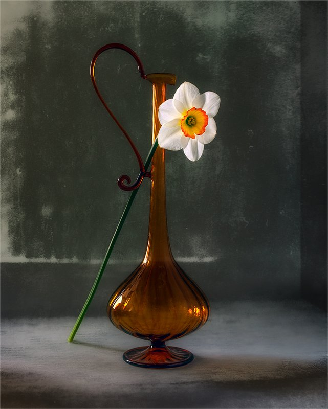 still life, натюрморт,    винтаж,    цветы,   нарцисс, кувшин, минимализм натюрморт с цветком и кувшиномphoto preview