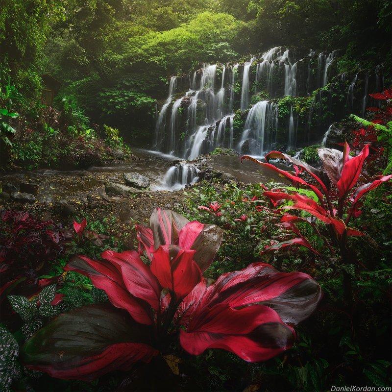 Индонезия Тропический райphoto preview
