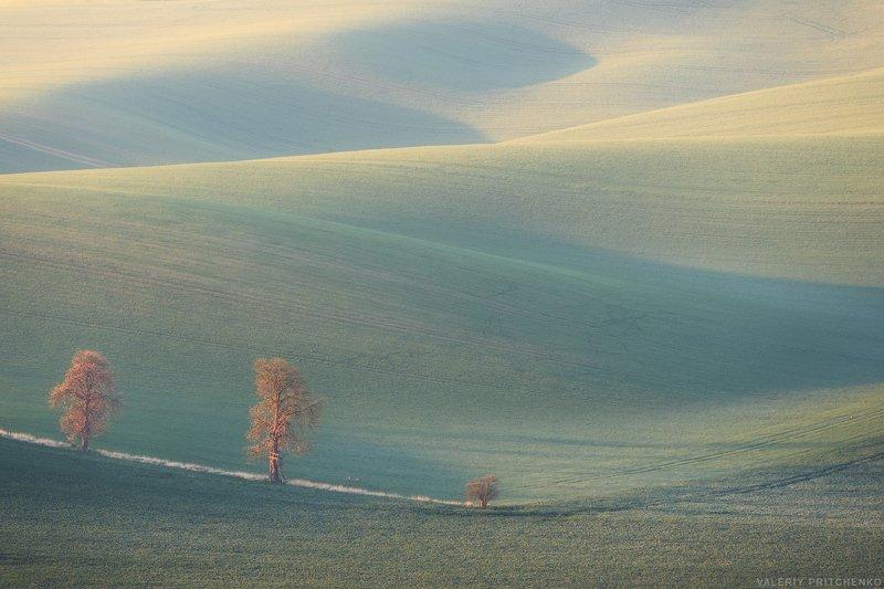 Утро в Южной Моравии с легким налетом инея на полях.photo preview