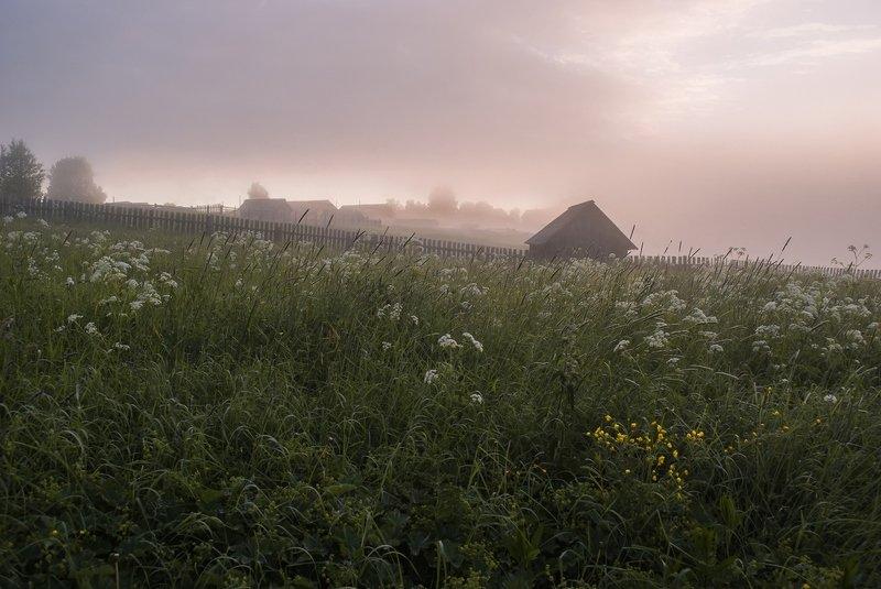Лето, утро, туман, трава, баня, деревня Ещё не кошена траваphoto preview