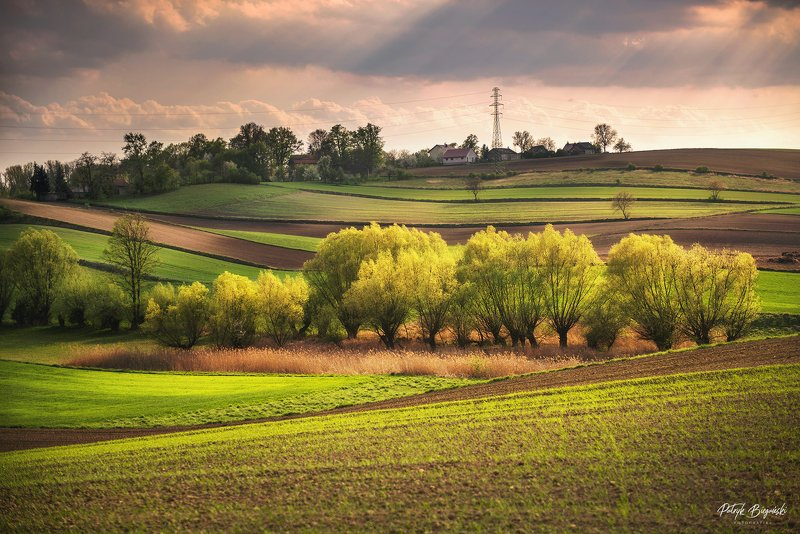 sunset, clouds, green, sunlight, light, village, rural, trees, nature, dramatic, sky, spring, Glowing fieldsphoto preview