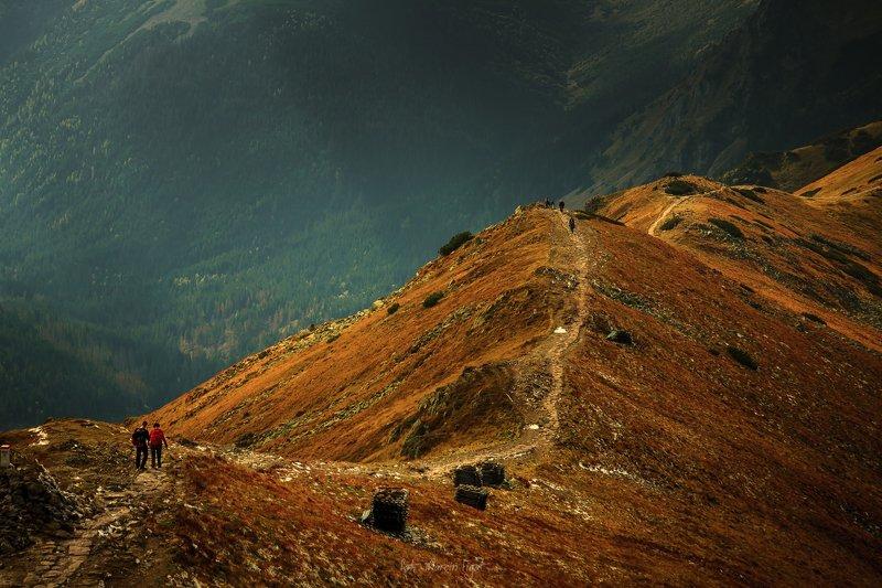 Trail to Czerwone Wierchy in autumn.photo preview