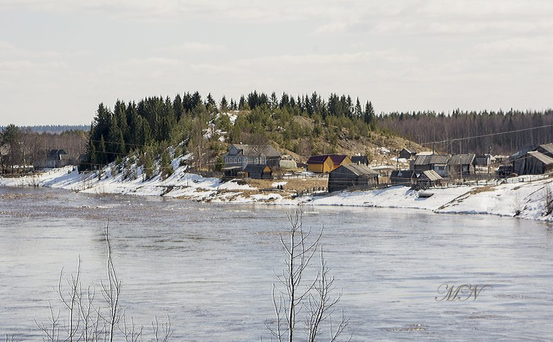 Деревня Павловская у реки Онеги.photo preview